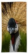 East African Crowned Crane Square Format Bath Towel