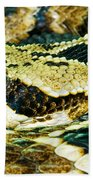 Eastern Diamondback Rattlesnake Bath Towel