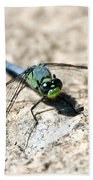 Eastern Pondhawk Bath Towel