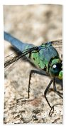 Eastern Pondhawk Side Bath Towel