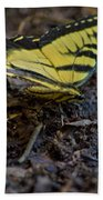 Eastern Swallowtail Bath Towel