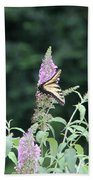 Eastern Tiger Swallowtail Butterfly -  Featured In Wildlife Group Bath Towel