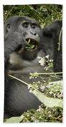 Eating Mountain Gorilla Bath Towel