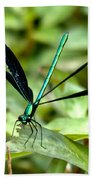 Ebony Jewelwing Bath Towel