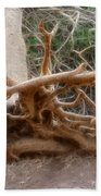 Eccentric Tree Root Growing In Ein Gedi Bath Towel