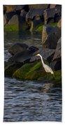 Egret On The Rocks Hand Towel