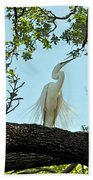 Egret Waiting For Mating  Bath Towel