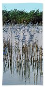 149838-egrets Feeding, Everglades Nat Park  Bath Towel