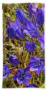 Elegant Brodiaea In Tilden Regional Park-california   Bath Towel