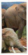 Elephant Bath Bath Towel