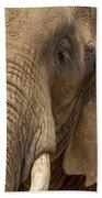 Elephant Close Up Bath Towel