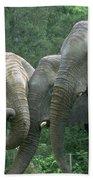 Elephant Ladies Bath Towel