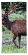 Elk Bull Bath Towel