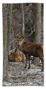 Elk Pictures 45 Bath Towel