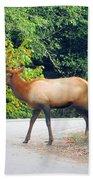 Elk Right Of Way Bath Towel