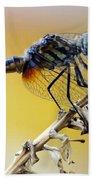 Enchanting Dragonfly Bath Towel