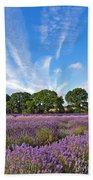 English Lavender Fields In Hampshire Bath Towel