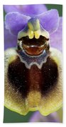Enigma Of Outer World Bath Towel