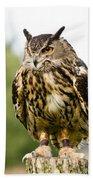 Eurasian Eagle Owl On Log Bath Towel