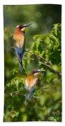 European Bee-eater Bath Towel