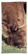 European Bison  Bison Bonasus Bath Towel