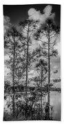 Everglades 0336bw Bath Towel
