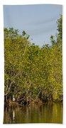 Everglades'  Egrets Bath Towel