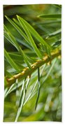 Evergreen Dream By Jrr Hand Towel