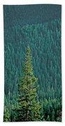 Evergreen Trees Bath Towel
