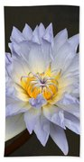 Exquisite Lavender Waterlily Bath Towel