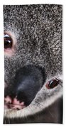 Eye Am Watching You - Koala Bath Towel