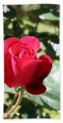 Fabulous Red Rose Bath Towel