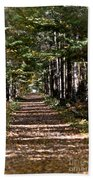 Fall Cedars Bath Towel