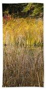 Fall Color At Banff Spring Basin Bath Towel