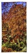 Fall Color At Biltmore Bath Towel
