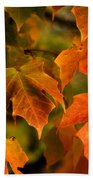 Fall Color Hand Towel