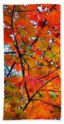 Fall Colors 2014-4 Bath Towel