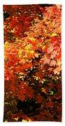 Fall Foliage Colors 21 Bath Towel