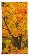 Fall In Pennsylvania Bath Towel