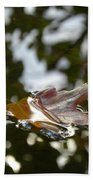 Fall Leaf In Stream Bath Towel