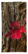 Fall Leaves Against Tree Trunk Bath Towel