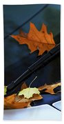 Fall Leaves On A Car Hand Towel
