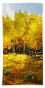 Fall Near Lake City Bath Towel