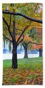 fall on the Potomac River Bath Towel