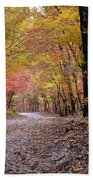 Fall Road Bath Towel
