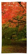Fall Trees Bath Towel