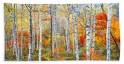 Fall Trees, Shinhodaka, Gifu, Japan Hand Towel