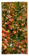 Fall Trio Collage Bath Towel