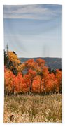 Fall's Splendor - Casper Mountain - Casper Wyoming Bath Towel