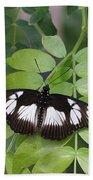 False Diadem Butterfly Bath Towel